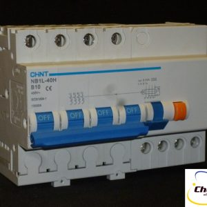 Chint 4P RCBO NB1L Series-781